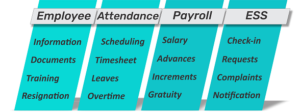 HR Software UAE, Payroll Software UAE, HR & Payroll Dubai